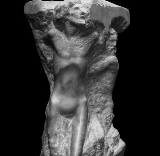 Omaggio a Michelangelo